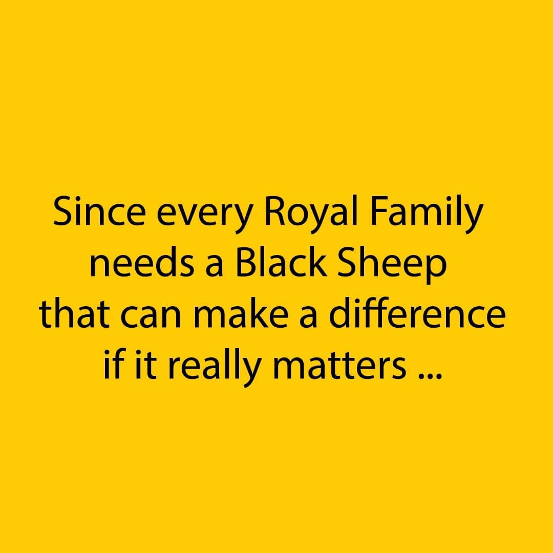 ILP I Love Padel Instagram Black sheep Black Crown Padel Rackets, Pala de Pádel, Paddle Racquets 10-10-2019 02